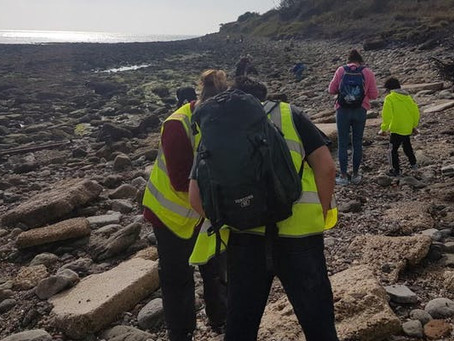 Geological and Fossil Field Trip, Sun 6 Oct 2019, 10:30am-13:30pm