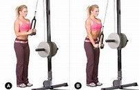 Beginner Personal Training Plan - Upper/Lower Split
