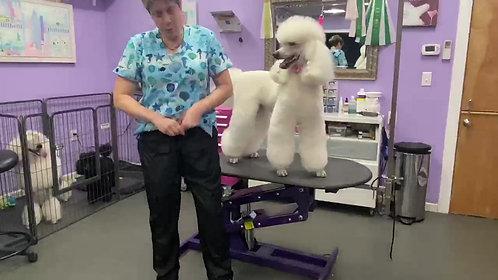 Grooming Pants