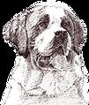 EZ-Groom_Dog_Image_2