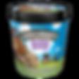 Ben & Jerry's Chubby Hubby Ice Cream
