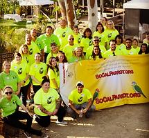 VolunteerSCP.png