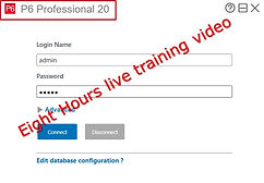 Primavera_Version_20_Training_Video.jpg