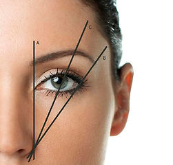 eyebrow measurements microblading niagara