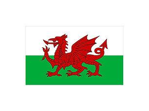 Holding Image - Wales.jpg