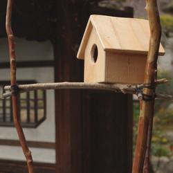 BIRD'S NEST CHAIR / wedge