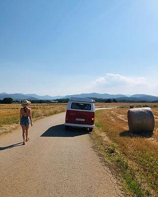 summer road vw kombi t2 - tomatina.jpg