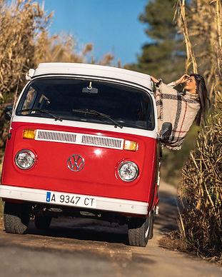 VW-Lookout.jpg