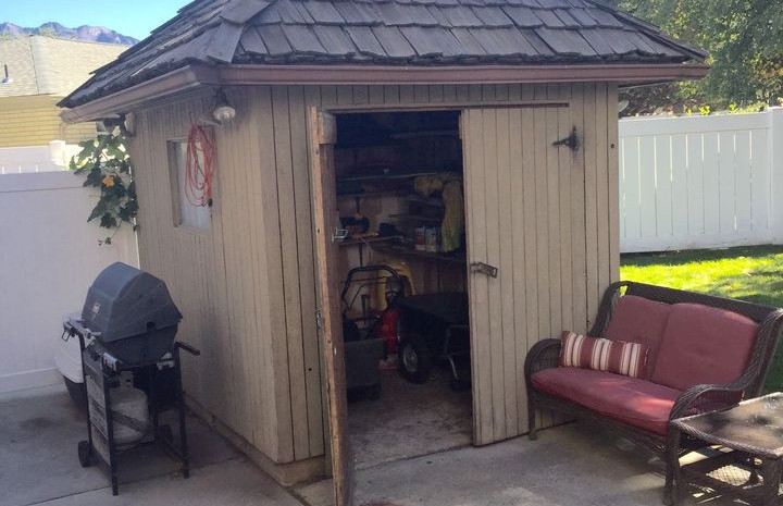 SHED BEFORE DEMO