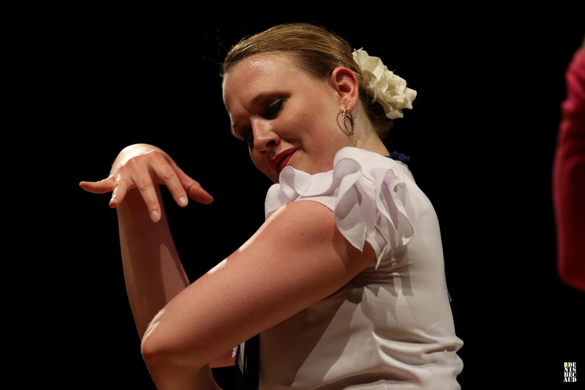Lisa flamenco