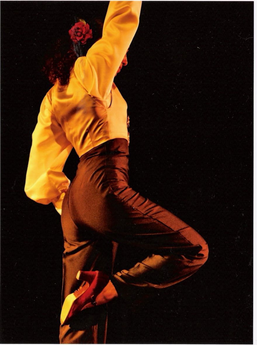 Farruca concert Lyon flamenco