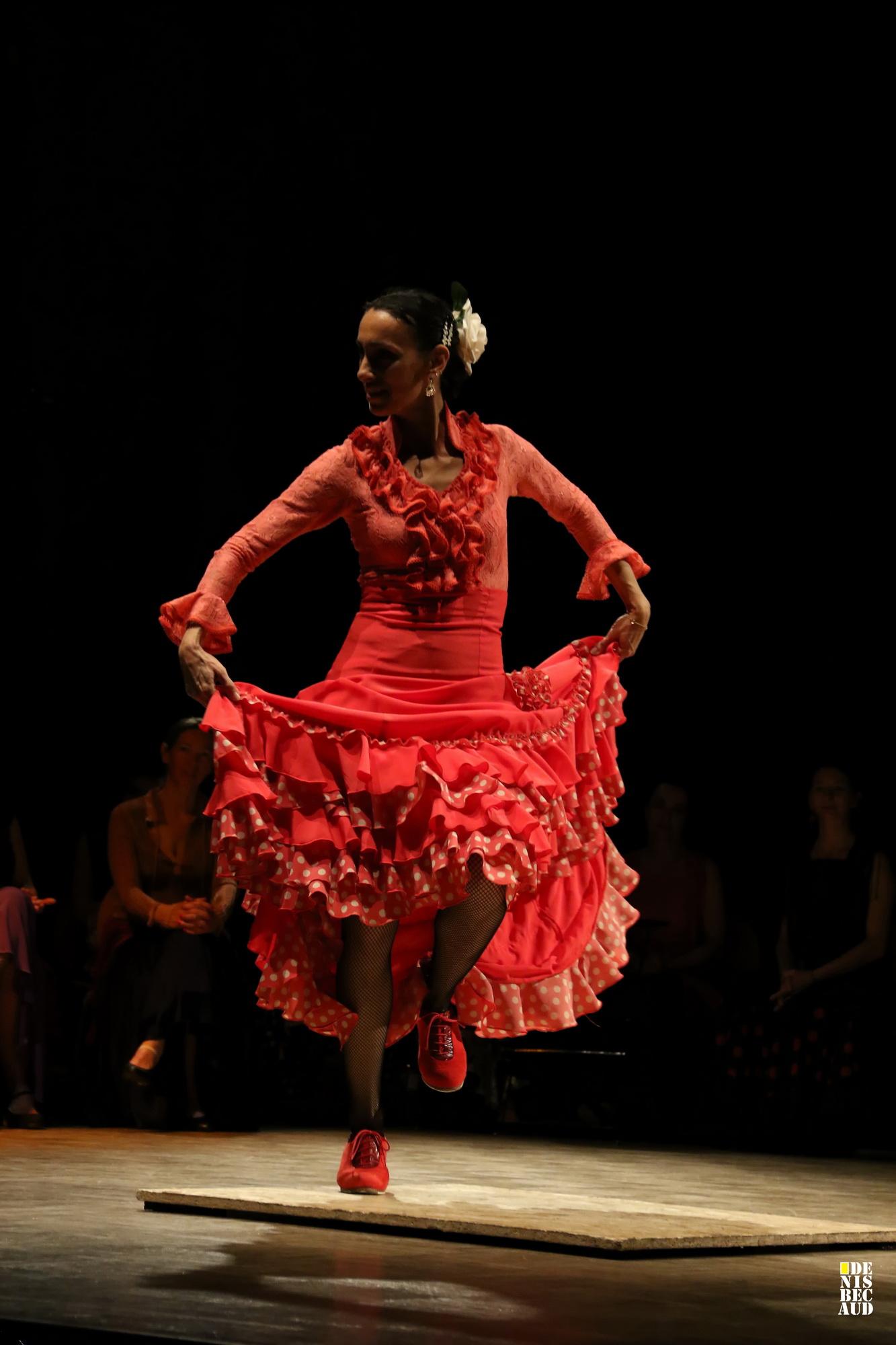 Danseuse flamenco Annecy