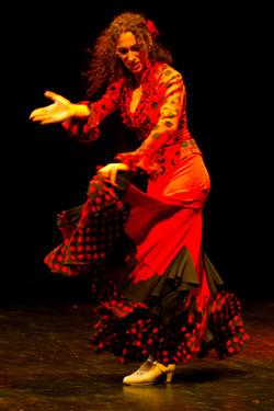 Animation flamenco Geneve