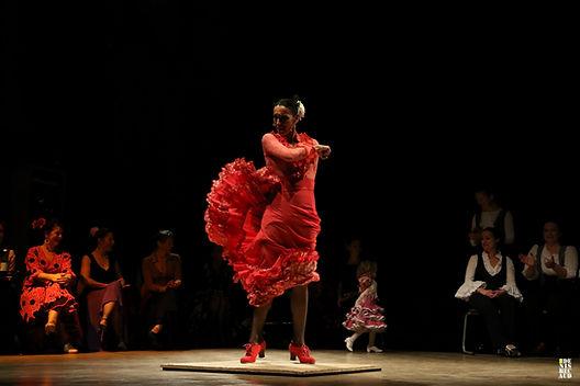 Flamenco_DBE_21.jpg