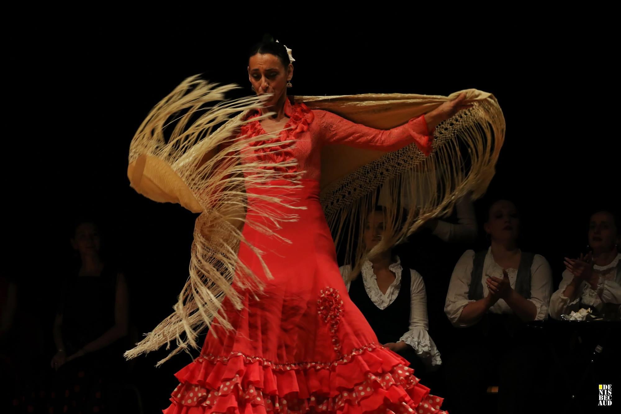 Flamenco Haute savoie