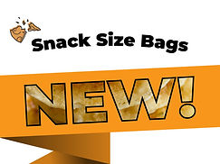 NEW-cover-image-snack-size (1).jpg