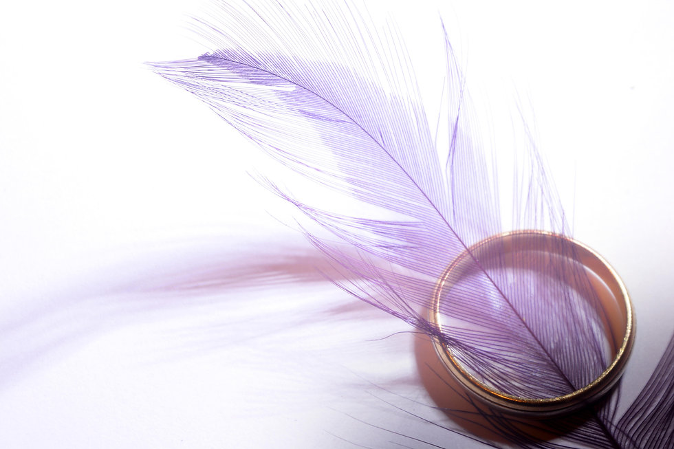 Canva - Purple Feather in Gold-colored R
