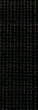 Footprints_Hopfen Hallertau20.JPG