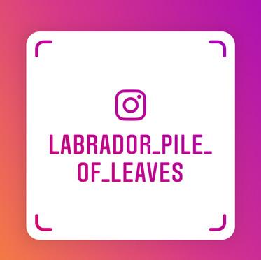Instagram - wir freuen uns auf Ihren Besuch
