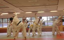 Weekly Martial Arts Classes