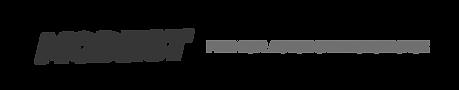Modest_Logo.png