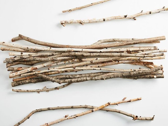 Would you spend $42 for a bundle of sticks?