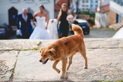 Casamento-0033-4874