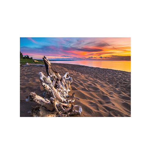 Lake Superior Driftwood Note Card