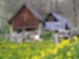 au printemps les estives du village de cathervielle