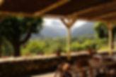 vue panoramique sous les canisses