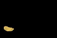 Raven Logo-Web2 (2).png