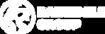 DVPS-logos-site-02.png
