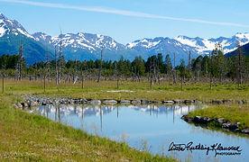 Anchorage, Alaska - 13-watermarked.jpg