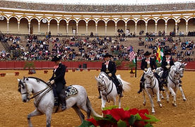Europe Spain Seville - 29.jpg