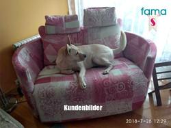 fama_moonrise-sessel-19_stiegler-wohnkultur-fuessen.jpg
