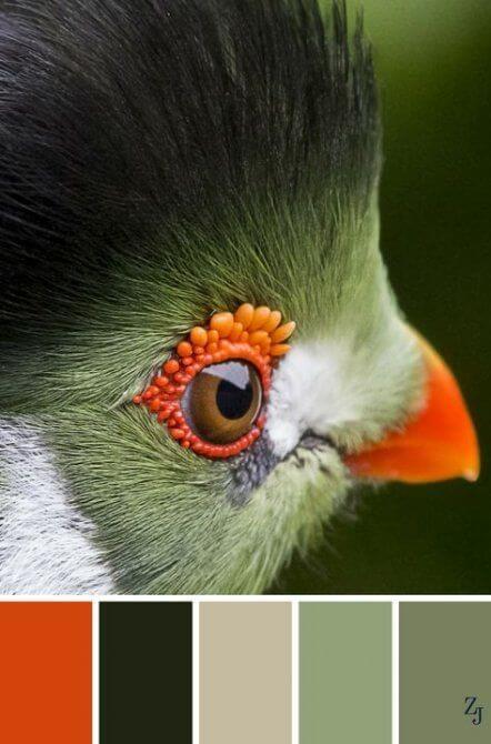 wohnen_farben_Natur_stiegler-wohnkultur_