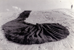 Terral, 1989