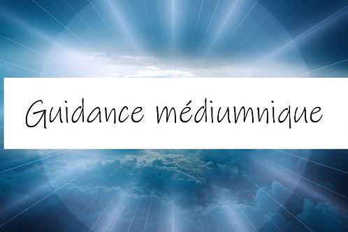 Guidance Médiumnique (1h00 / 1 domaine)