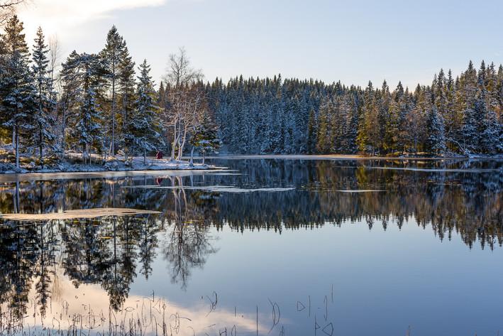 Lovely winter days