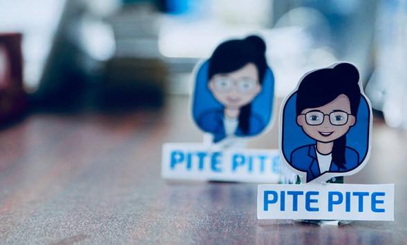 Pite Pite Financial Chatbot