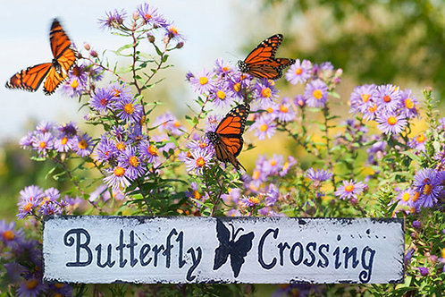 Butterfly Crossing Wood Sign