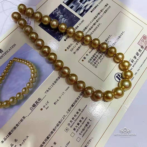 Golden South Sea Pearl Necklace 14-17.1mm