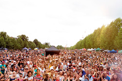 crowd MV