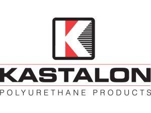 v_kastalon_logo_pms185_k_profile