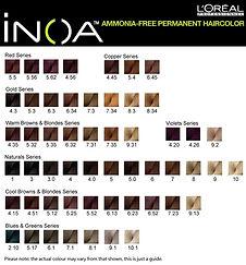 INOA Hair Color 2.jpg
