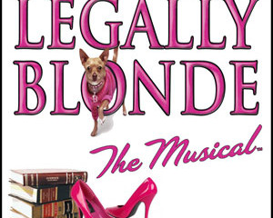 Legally Blonde The Musical at The Company Theatre, MA