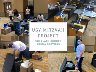 Mitzvah Project - USY