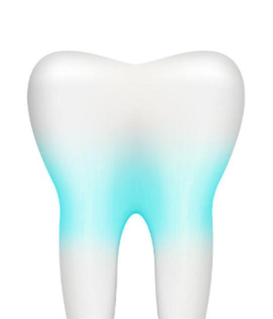 parodonto ovvero ciò che sta intorno al dente