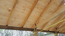 Picnic Shed Roof.8