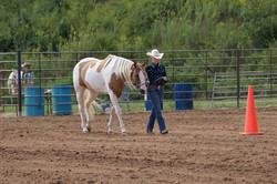 Fall+Livestock+2.jpg